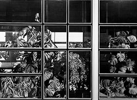 """🔊 """"Justin Weiler"""" OPERIRE #5. Couvrir, recouvrir, cacher, dissimuler à la Galerie Paris-Beijing, Paris Couvrir, recouvrir, cacher, dissimuler à la Galerie Paris-Beijing, Paris du 30 janvier au 15 mars 2020"""