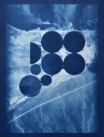Caroline Le Méhauté, Graphein 4, 2019. Cyanotype sur papier Arches, 80 x 60 cm. Courtesy H Gallery. Secteur Promesses.