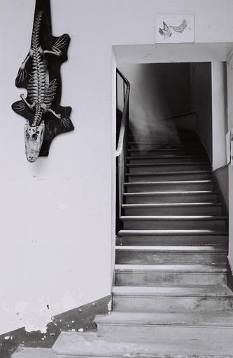 Valérie Sonnier, Galerie Huguier, 2019. Crédit photo : Valérie Sonnier. Courtesy de l'artiste.