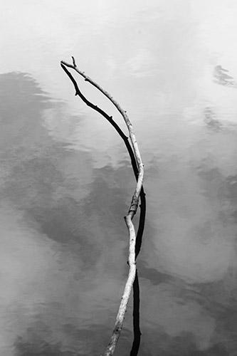 Sarah Ritter, L'ombre de la terre. © Sarah Ritter