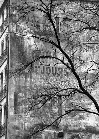 Frank Horvat, Arbre et ancienne publicité murale, Paris, 1955. © Frank Horvat.
