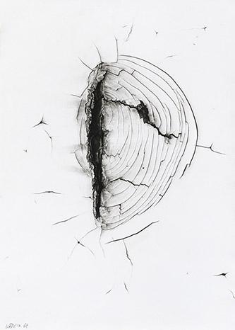 Alois Nožička (1934), Ani labuť ani luna (Ni cygne ni lune), 1967. épreuve gélatino-argentique 39,4 x 29 cm. Coll. Claude et Henri de Saint Pierre. ©Droits réservés.