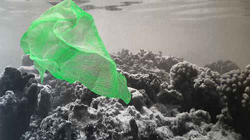 Raphaëlle Peria, Les voleurs de couleurs #3, 2020. Peinture sur photographie, 24 x 32 cm. Courtesy de l'artiste et Galerie Papillon.