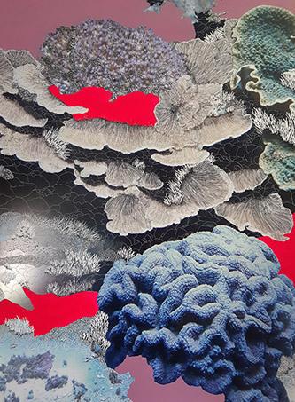 Raphaëlle Peria, Colpophyllia, 2020. Peinture, grattage sur photographie, 105 x 70 cm. Courtesy de l'artiste et Galerie Papillon.