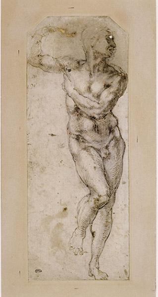 Michelangelo Buonarroti, dit Michel-Ange, Vers 1504-1506. Homme nu, debout, la tête de- profil vers la droite. Paris, musée du Louvre, département des Arts graphiques. © RMN-Grand Palais (musée du Louvre) / Michèle Bellot.
