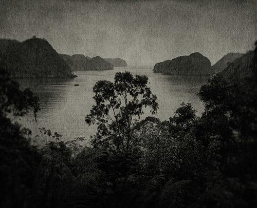 FLORE, L'odeur de la nuit était celle du jasmin. © FLORE, courtesy Galerie Clémentine de la Féronnière.