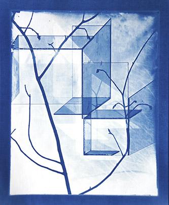 Laurent Millet, sans titre #1, série Schloss im Wald zu Bauen, 2012. Pièce unique – 40x50 cm, tirage cyanotype par contact, courtesy Galerie Binome.
