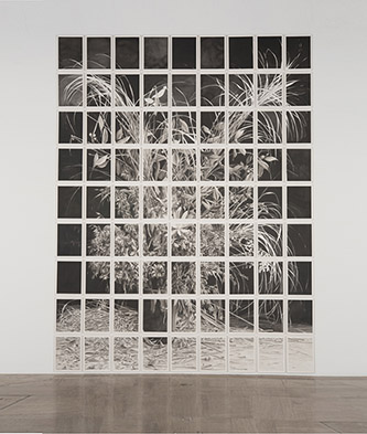 Justin Weiler, Bouquet pour Annie (détail), 2017, Encre de Chine sur papier Arches encollé sur CP peuplier, 395x295 cm. © Justin Weiler, courtesy Galerie Paris-Beijing.