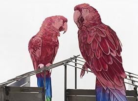 """""""Daniel Otero Torres"""" Tierradentro, au Drawing Lab, centre d'art privé dédié au dessin contemporain, Paris, du 13 mars au 17 juin 2021"""