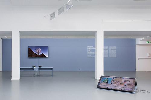 Vue de l'exposition Stormy Weather, Centre culturel suisse, 2021 © Margot Montigny. cur. Claire Hoffmann et Katharina Brandle.