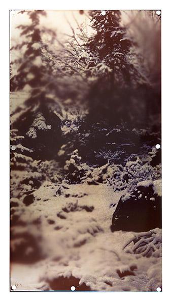 Baptiste Rabichon & Fabrice Laroche, série Les intermittences du coeur, 2019. Tirage unique sur papier RC dans une édition de 3 (+3EA), épreuve chromogène par contact d'après autochromes originaux (circa 1910-1917) des jardins d'Albert Kahn à Boulogne-Billancourt, collection de Jeanne.