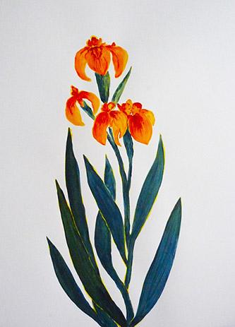 Odonchimeg Davaadorj, Le baiser toxique, acrylique sur papier, 65cm x 50cm, 2021.