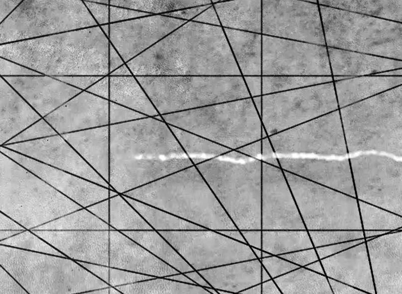"""🔊 """"Daphné Le Sergent"""" Silver memories, le désir des choses rares, au Centre Photographique d'Île-de-France, Pontault-Combault, du 24 mars au 18 juillet 2021"""