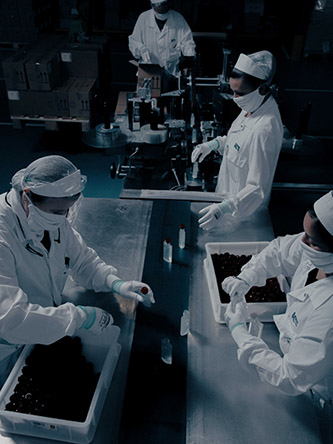 Mattia Balsamini, April 16th, 2020 Inside ICS S.p.a. (Industrie Cosmetiche Riunite), in Lodi, Lombardy. ICS started producing hand disinfectant on behalf of the luxury brand Bulgari in response to the COVID 19 outbreak. In this image: one of the two active production lines, where disinfectant is bottled by a lesser automated process. Courtesy © Mattia Balsamini.