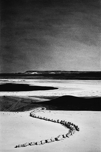 Mathieu Dufois, Archéocètes 01, 2019. Dessin à la pierre noire, 71 x 48 cm © Mathieu Dufois, Courtesy Galerie C.