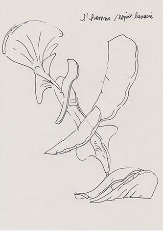 Marguerite Humeau, steles elixirs, dessin préparatoire, 2021. Courtesy of the artist.