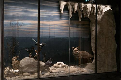Diorama anthropocène, fonds peints par l'artiste François Malingrey, © Musée de la Chasse et de la Nature, Paris, photo Béatrice Hatala.
