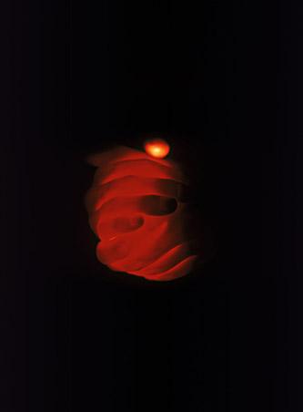 Julien Discrit, Brighter than a thousand suns, 2007, Tirage couleur à développement chromogène sur papier sané contrecollé sur aluminium, 80 x 60, Fonds d'art contemporain – Paris Collections, ADAGP 2021.