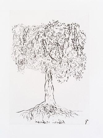 Giuseppe Penone. Alberi inversi (Arbres inversés), 2018. Pointe sèche. BnF, Estampes et photographie. © Bertrand Huet / Galerie René Tazé.