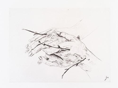Giuseppe Penone. Vene (Veines), 2016. Pointe sèche. BnF, Estampes et photographie. © Bertrand Huet / Galerie René Tazé.