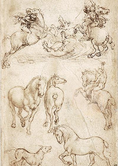 "🔊""Léonard de Vinci. Animal"" Armelle Fémelat"