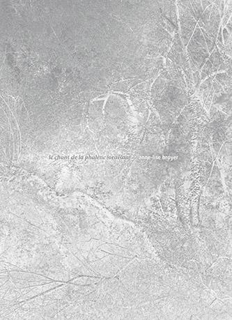 Couverture de le chant de la phalène (oraison) de Anne-Lise Broyer en co-éditions Loco & nonpareilles. © 2020 Loco & nonpareilles. © 2020 Anne-Lise Broyer.