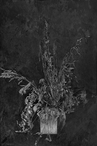 Anne-Lise Broyer, le chant de la phalène (oraison). © Anne-Lise Broyer. Interview de Anne-Lise Broyer, par Anne-Frédérique Fer, à Nogent sur Marne, le 25 août 2020, durée 25'19. © FranceFineArt.