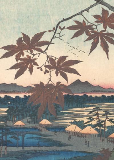 """🔊 """"Japon, un voyage silencieux"""" Un livre de Sandrine Bailly"""