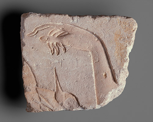 Royal Hand, Egypt, CC0 1.0 Universal, The Metropolitan Museum, New York (USA), Courtesy Chose Commune.
