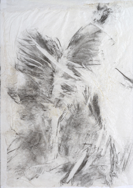 Hélène Bremond, 09 du n° 40030, fusain sur papier de soie, 70x100 cm, 2014.
