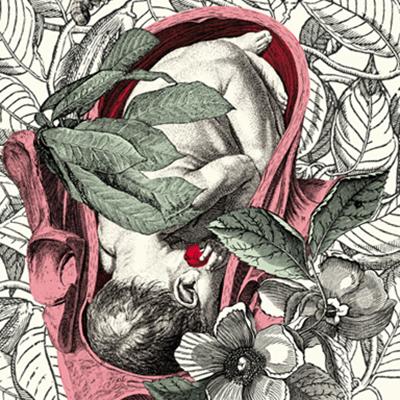 """""""Del Enebro (du genévrier)"""" conte des frères Grimm, illustré par Alejandra Acosta"""