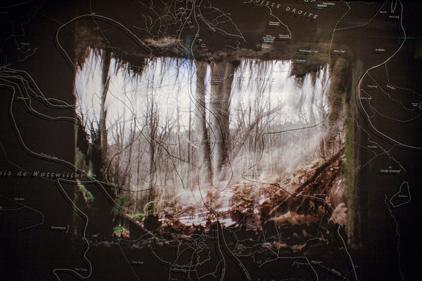 Sophie Zénon, LIPPISCHE SCHWEIZ (POUR VIVRE ICI), 2017. Format 80 X 120 cm. Pièce unique. Tirage fine art et gravure sur verre réalisée manuellement par l'auteur. © Sophie Zénon.