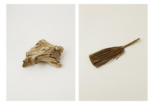 Ilanit Illouz, série A Poser, Désert de Judée, bois et palmier. © Ilanit Illouz.